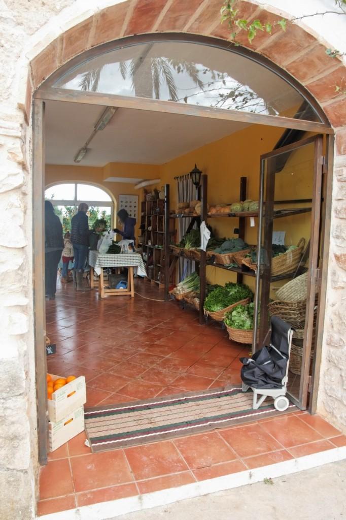 La tenda de verdura obert