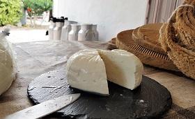 formatge-quesart